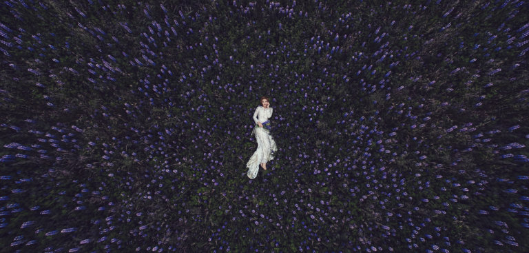 Drone photography of a bride in a field of flowers