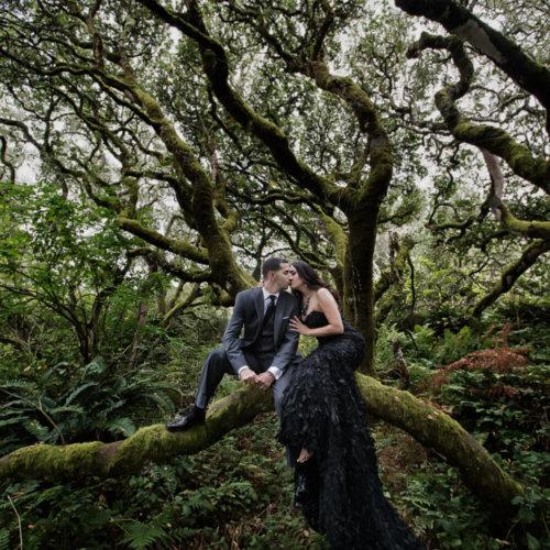Bride & Groom sitting on a tree branch