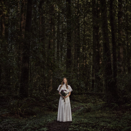 Bride standing in a forest full of trees